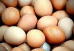 Artesanato com casca de ovo